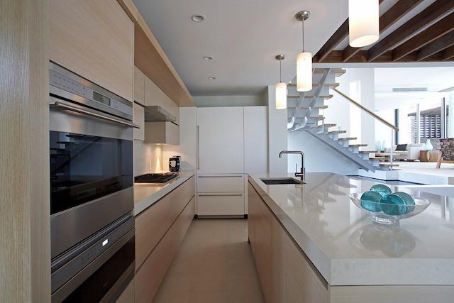 Ani Estate has a modern kitchen