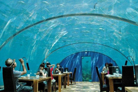 Image result for exotic restaurants