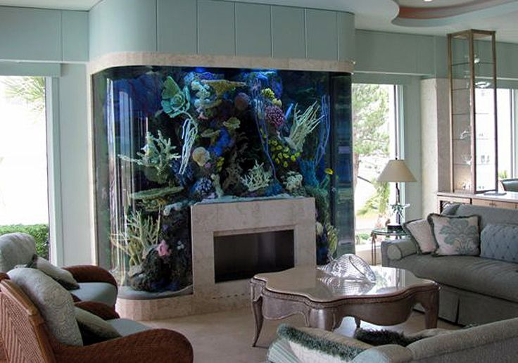 fish tank fire place