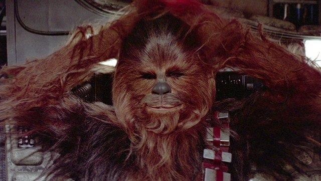 Chewbacca's Head