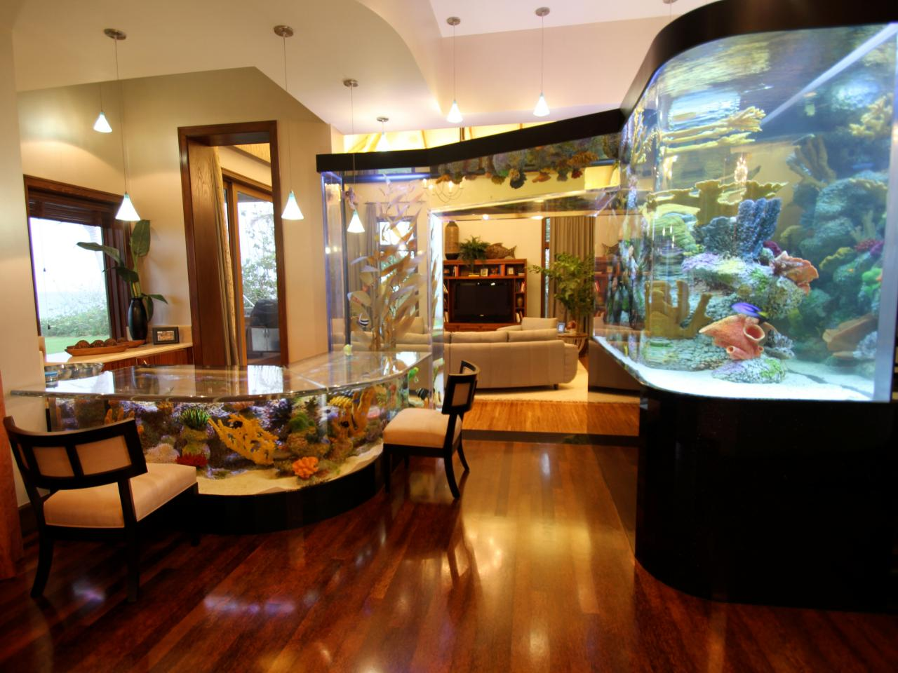 Fish tank in kitchen - 2 Million Dollar Fish Tank In Kitchen