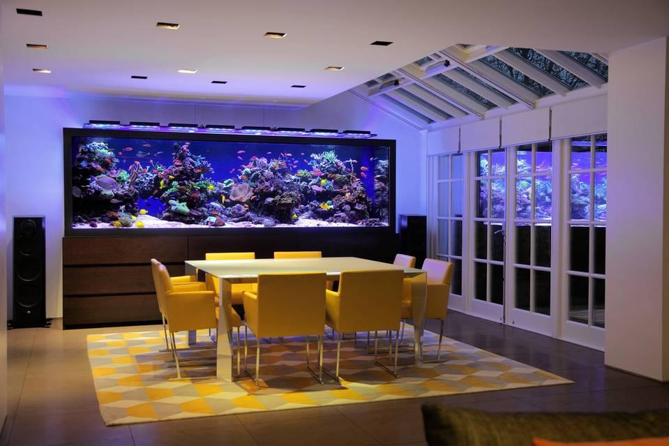 $1 million home aquarium