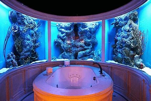 multi million dollar bathroom fish tank