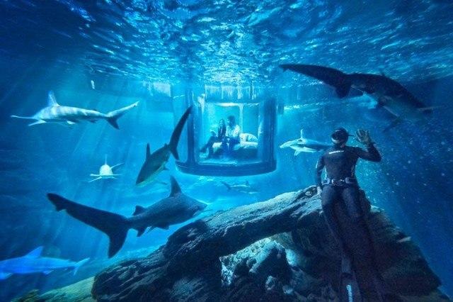 underwater-bedroom_290316_01